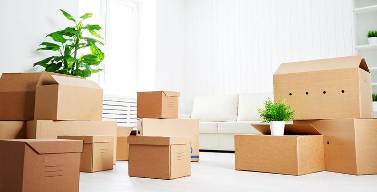 """Günstige Zimmer sind Mangelware - Nach einer Analyse von """"Studis Online"""" sind die Kosten für ein WG-Zimmer im Durchschnitt um 3,8 Prozent gestiegen."""