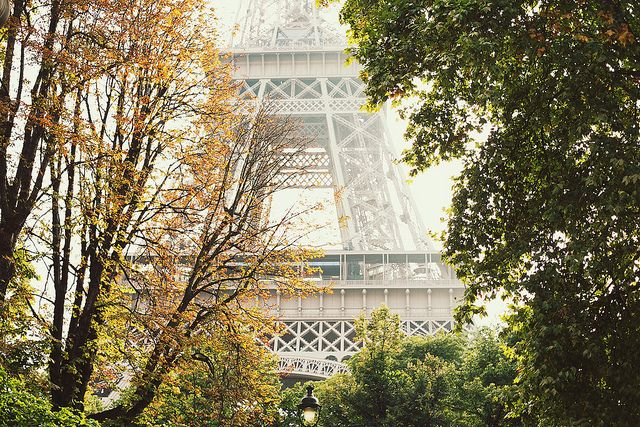 Magical Afternoon by Paris in Four Months, via Flickr