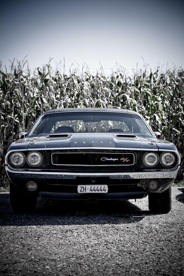 I love American Muscle Cars. #Challenger #Car Eldodge challenger, elegido en su epoca como el mejor muscle car de la historia!!!