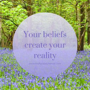 Blog post - How your beliefs create your reality — The Floral Alchemist
