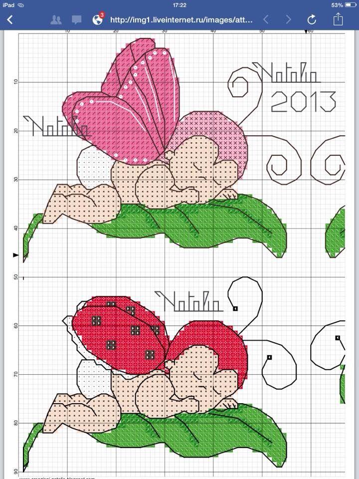 Farfalla e coccinella