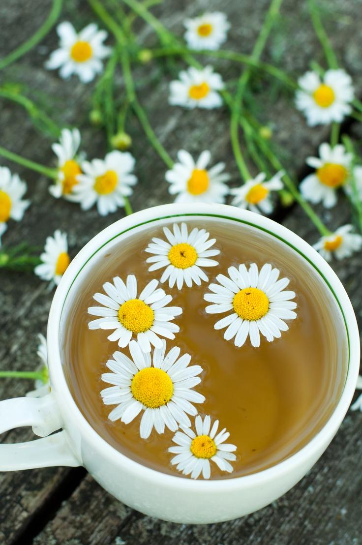 Chinese flower tea - Buy Flower Tea Online China Wholesale Chinese Flower Teas