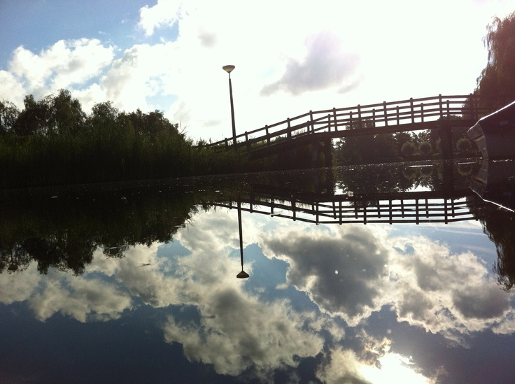 "our pond behind our house with ""Dutch skies"""