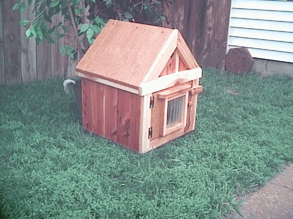 63 best ideas about cat enclosure on pinterest shelters for Having an indoor cat