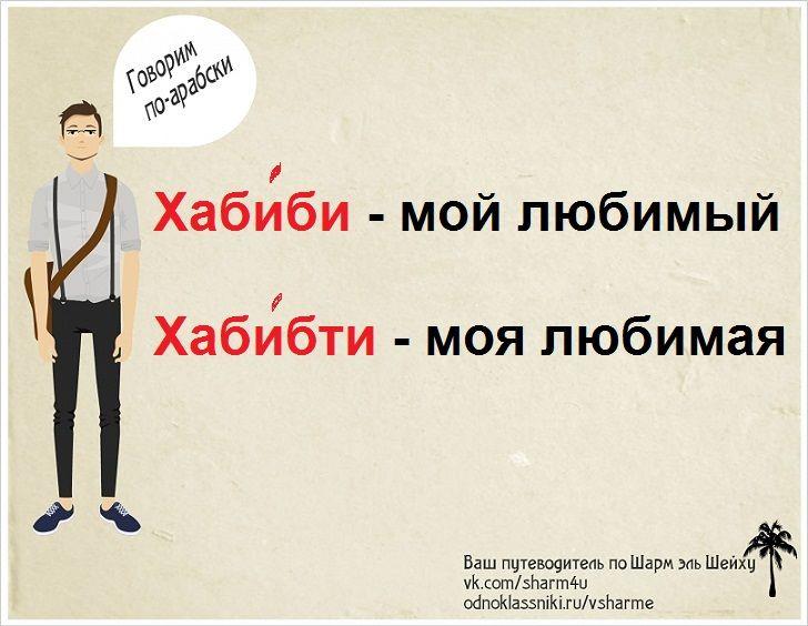 русско-арабский разговорник - любимый