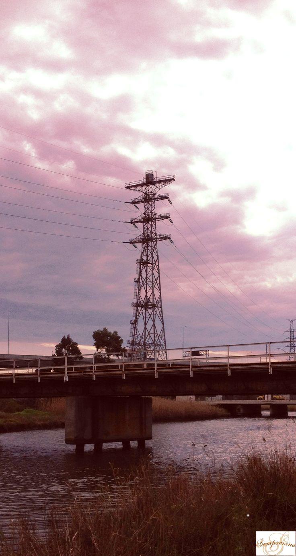 "Moonee Ponds Creek Tower. West Melbourne. ""Dudley Flats""."