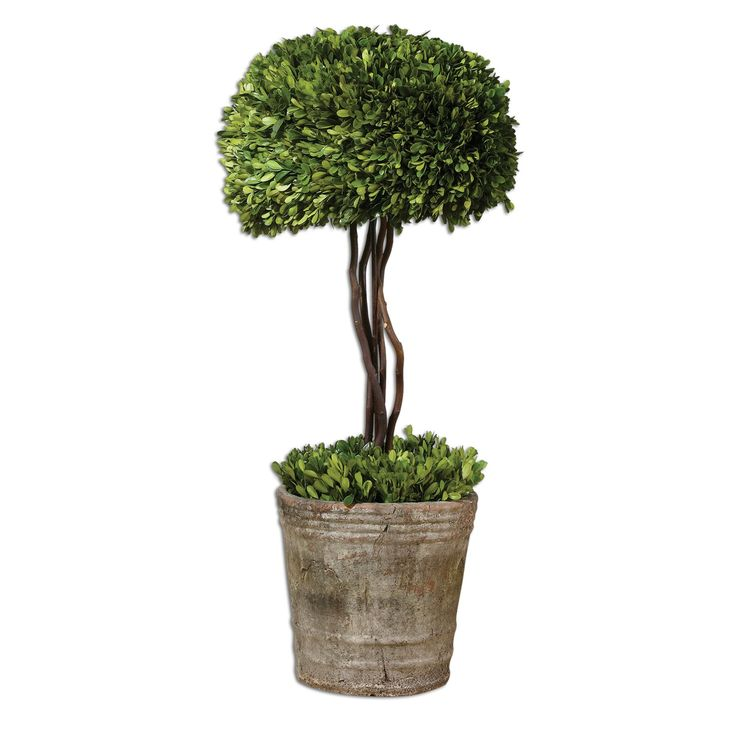 Uttermost 60095 Preserved Boxwood Tree Topiary Planter