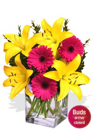 Sparkle    Why not brighten up someone's existence with this vibrant bouquet of yellow Asiatic Lilies and bright pink Gerberas. Guaranteed to put a sparkle in anyone's eyes ! $58.64