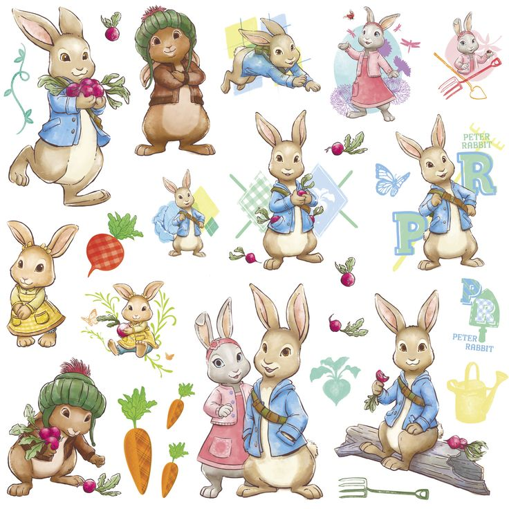 Bring your walls to life with these Peter Rabbit wall decals. Great for temporary decorating, these wall decals are removable and reusable. Application is easy; slowly peel the decal from the backing and smooth onto any flat surface.