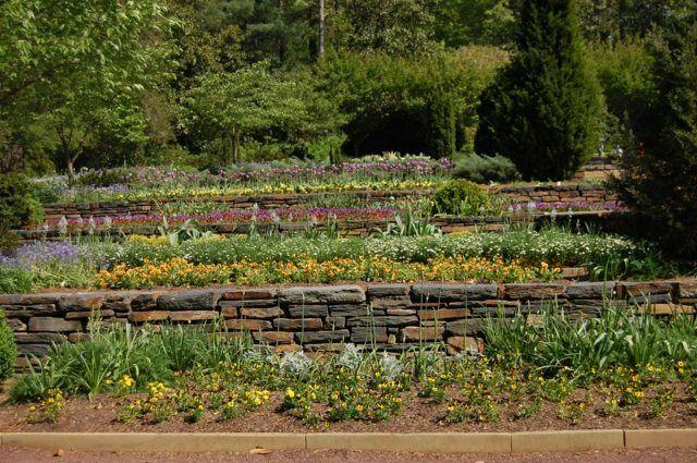 jardin en terrasses avec parterres de fleurs