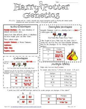 Genetics lesson plans 7th grade