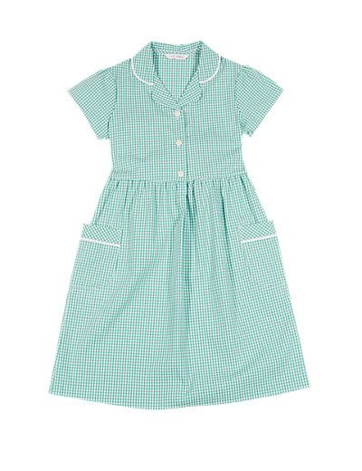 Classic Summer Gingham Checked Dress | M&S