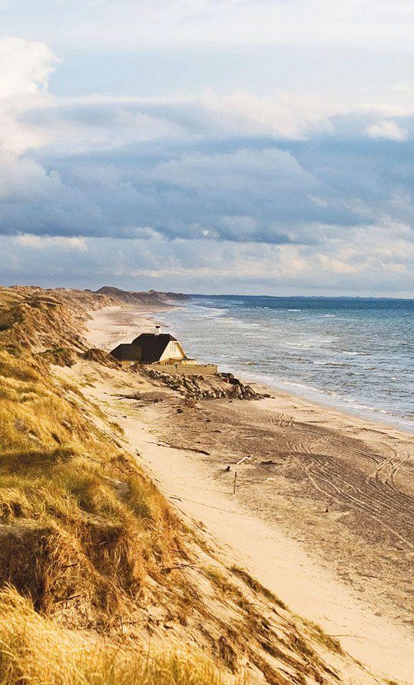 Klitplantage dunes, Skagen, Denmark. Photo: Hans Zeegers