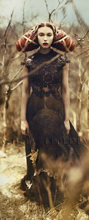 "Culture Remix --- Ashley Lebedev - ""Birds of Passage"" | New Faerieland"