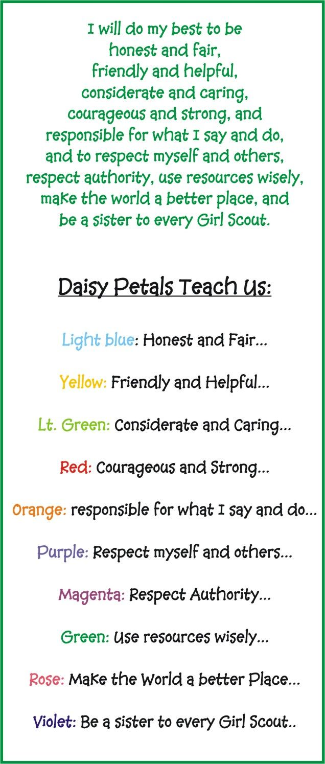 best 20 scout daisy petals ideas on pinterest daisy petals