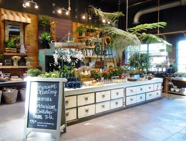 What a great 'BAR' for either terrariums, florals or both.