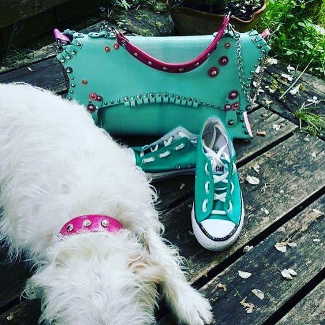 Waiting for Spring....#EvilEve #evilevedesign #handbag #leather #dog #collar #purse #fashion #spring #blue