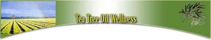 Canker Sore Remedies (Tea Tree Oil)