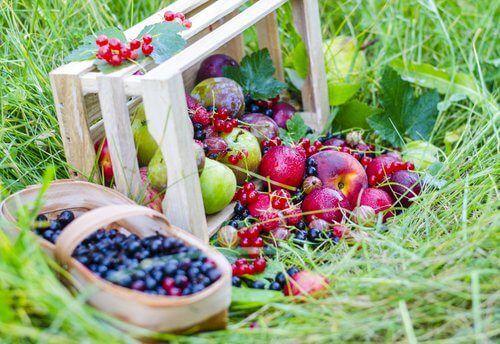 8 frullati a base di frutta contro la stitichezza - Vivere più sani