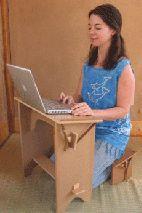 http://www.zafu.net/dynamicoffice.html The Body Friendly Office combo