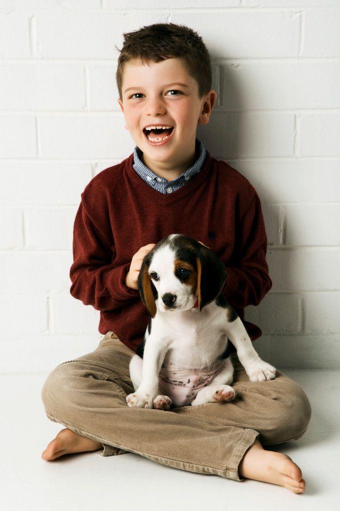 Beaglier Puppy