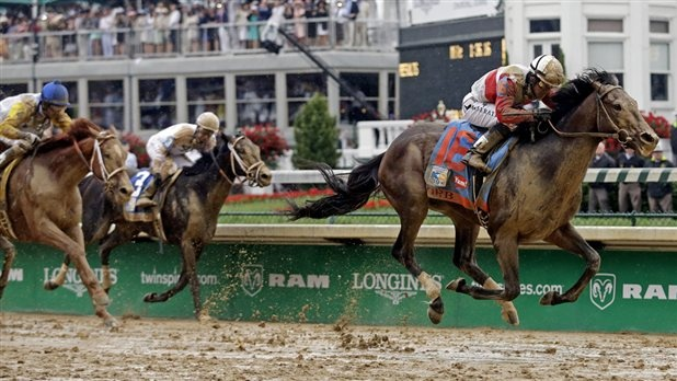 Horse Racing News- Get the Latest Horse Racing Results, Track Summary, Pictures, Breeders' Cup & Triple Crown Highlights- NBC Sports