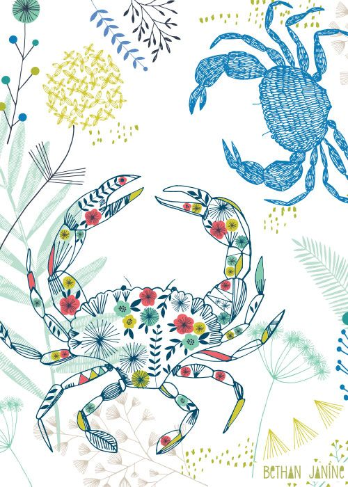 Crustaceans | Bethan Janine