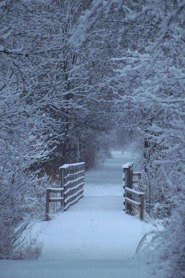 Hình Phong Cảnh Mùa Đông F8e201d41c5c4a3c5e52a0ab7ee9c964--winter-landscape-winter-scenes