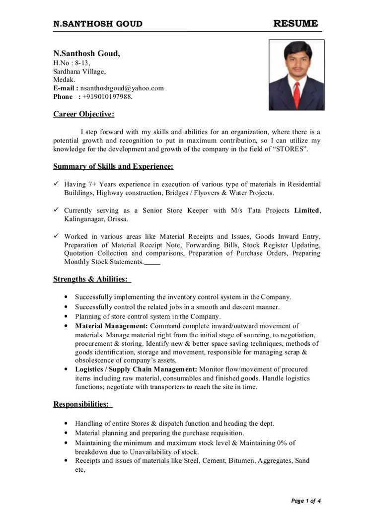 download free resume sample for store keeper Google