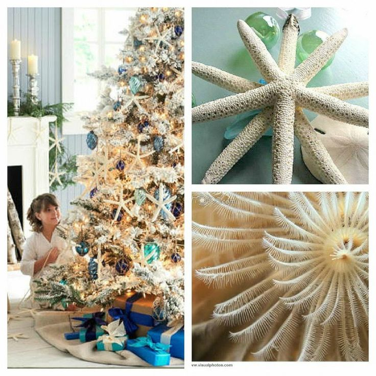 267 best images about coastal holiday gift guide beach - Christmas tree color schemes ...