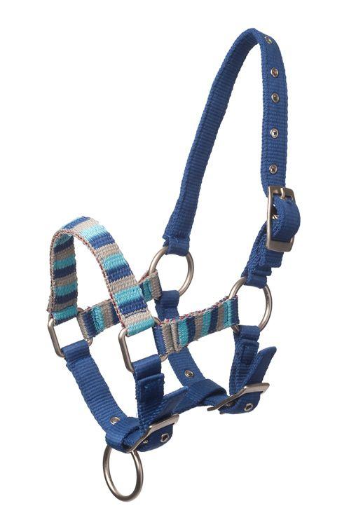 Bestel nu deze #halster voor uw paard #pony en shetlander bij MiniHorseShop. Alles voor #paard #minipaarden #shetlanders