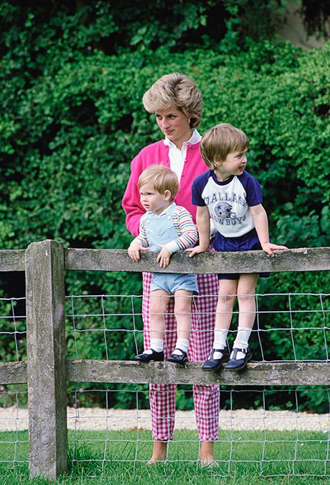 Prince William and Prince Harry will present a new award on behalf of the Diana Award, which honours the legacy of their mother Princess Diana