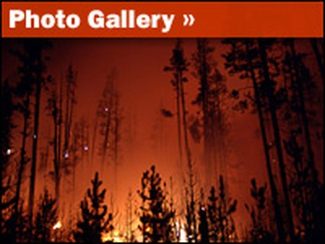 Photo Gallery: Yellowstone Fires