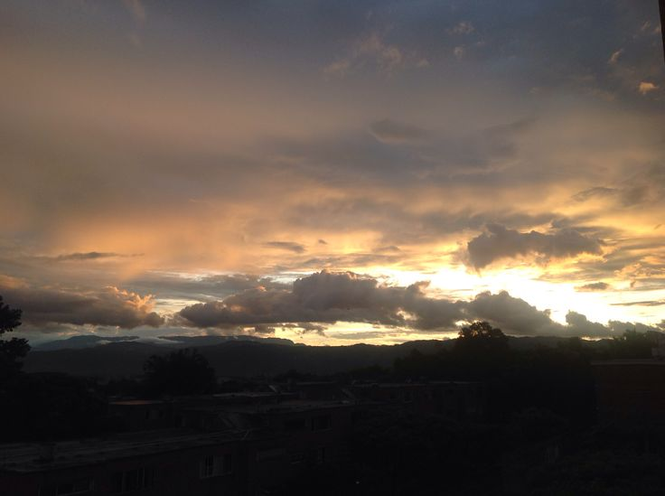 Desde Bucaramanga, noviembre 3 de 2013
