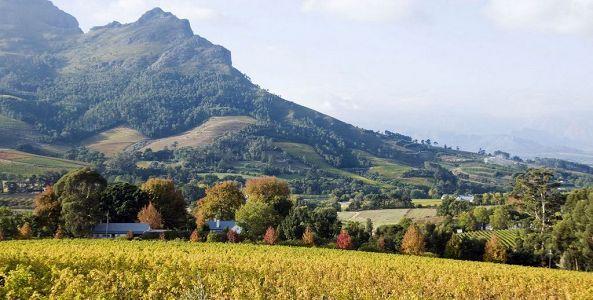 The beautiful Simonsberg on the outskirts of Stellenbosch