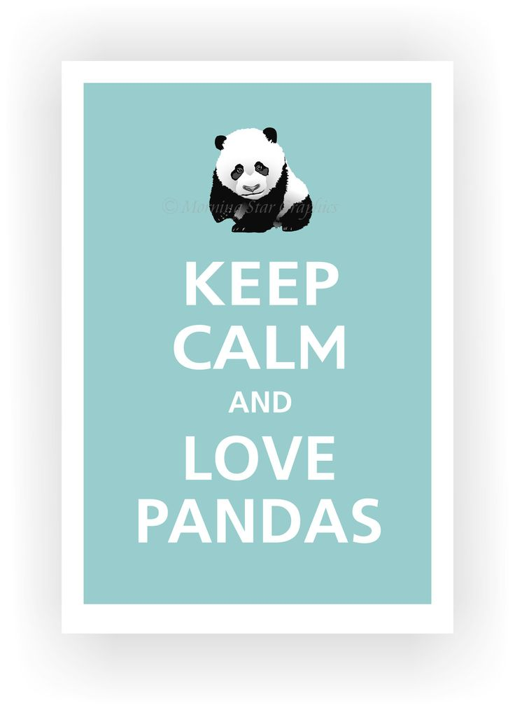 1000 images about panda for Keep calm immagini