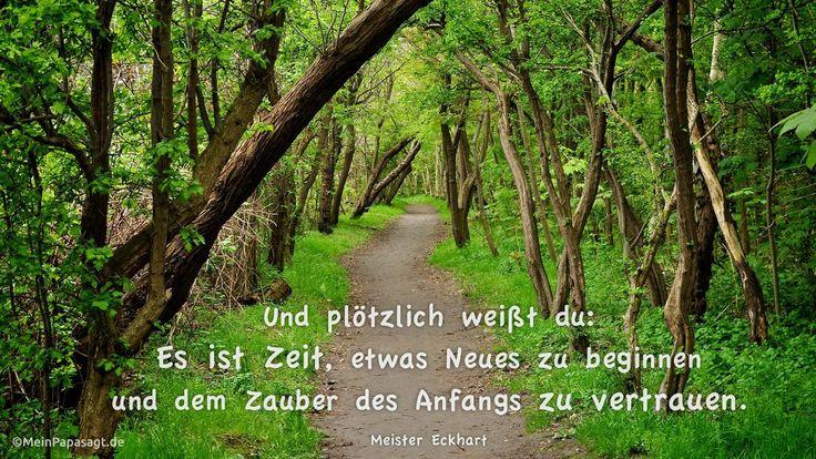 Mein Papa sagt... Und plötzlich weißt du: Es ist Zeit, etwas Neues zu beginnen und dem Zauber des Anfangs zu vertrauen.  Meister Eckhart #Zitate #deutsch #quotes      Weisheiten & Zitate TÄGLICH NEU auf www.MeinPapasagt.de