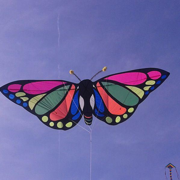 © Aldo Migliavacca 2016. Handmade kite. https://www.youtube.com/watch?v=JMk8hldQDVw