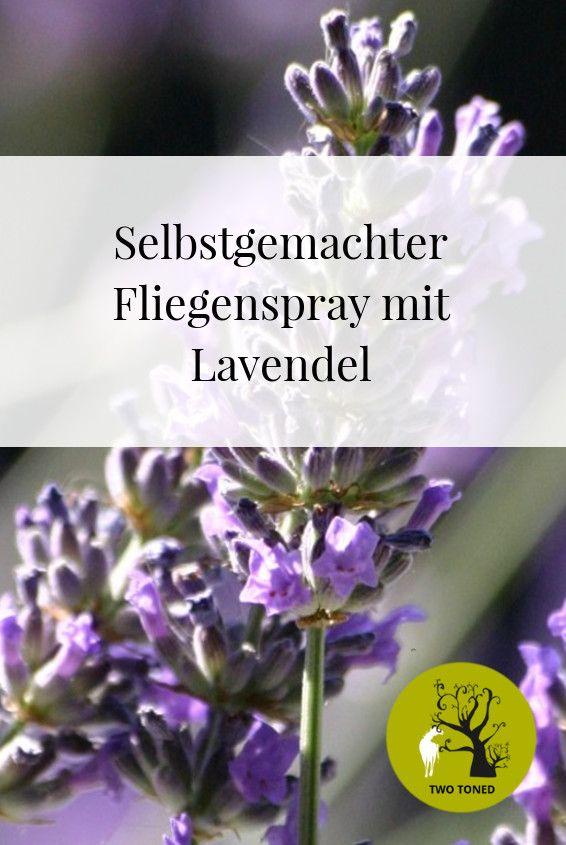 Nachdem ich vor kurzem auf einer Ausbildung für Aromaöl Anwendungen bei Tieren war, habe ich einen Fliegenspray mit Lavendelöl selber gemacht, beim Ausreiten getestet und für gut befunden!