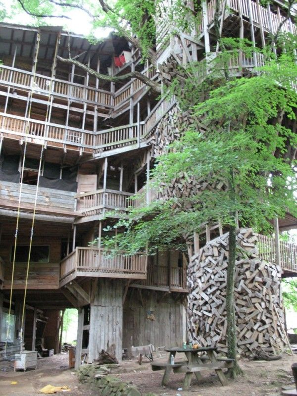 worlds largest treehouse living in nature