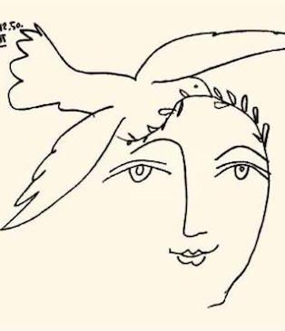picasso line drawings