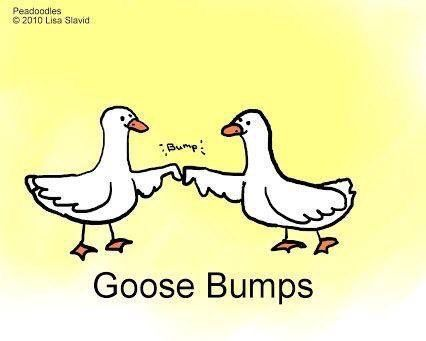 A whole new meaning to goose bumps lol