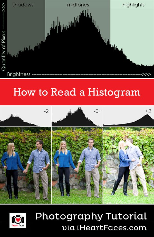 Learn how to read a histogram - Photography Tutorial on I Heart Faces Photography Blog