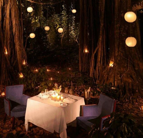 Romantic dinner for two....who would you take?