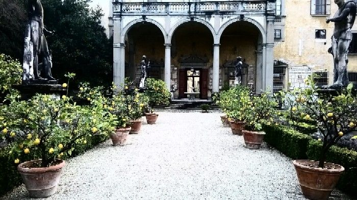 Spring is here! lemon trees are coming out ........ and back to their original spots at the #Corsini #Garden in #Florence