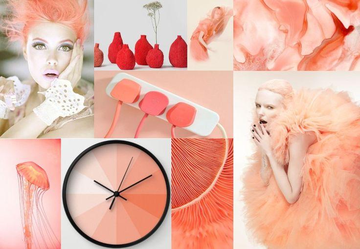Coral Peach   Board Inspiration
