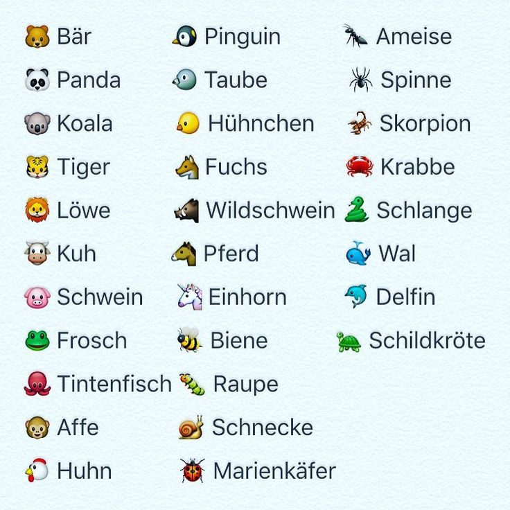 German animal vocabulary #German #deutsch #languagelearning