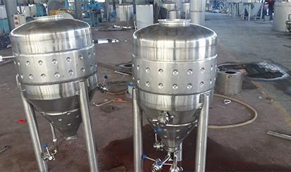 100L single layer fermenter
