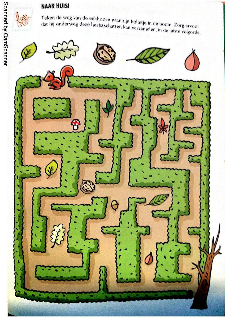 * Help eekhoorn om de weg te vinden!