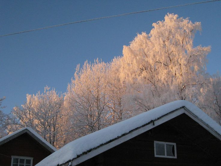 22. luukun valonsäteet korostavat kauniita kuurapuita. Enää 2 yötä jouluun! Kuva: Jukka-Pekka Friman